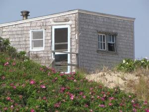 The dune shack Euphoria